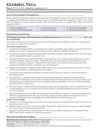 resume templates account executive position at yelp business account york university essay writing help literary analysis essay buy do