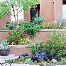 Desert Landscape Ideas by Easy Care Desert Landscaping Ideas Ideas Landscaping Ideas And