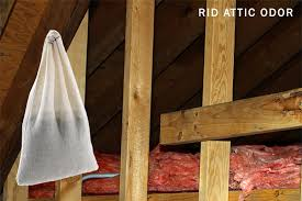 how to get rid of musty smell in furniture how to remove musty odor from the attic