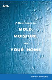 houston home inspection mold information