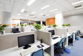 office cleaning tips keeping your office space free of common pests