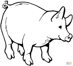 smiling pig coloring page free printable coloring pages