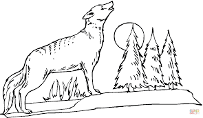 coyote howling at the moon coloring page free printable coloring