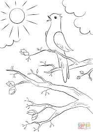 spring bird coloring page free printable coloring pages