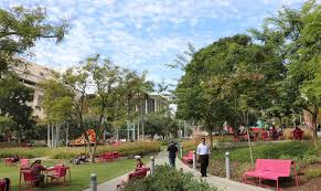lunchtime at grand park