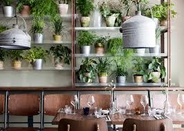 danish design studio creates an indoor garden for a restaurant