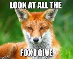 Fox Meme - fox imgflip