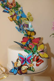 242 best butterfly ideas images on