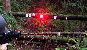 wicked hunting lights amazon the 5 best predator hunting lights reviews good game hunting