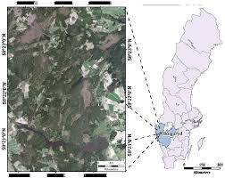 forests free full text low density lidar and optical imagery