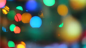 garland lights on pine tree out of focus colorful