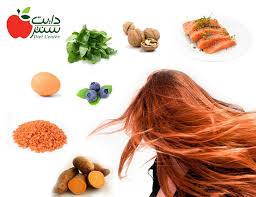 what foods help hair growth yahoo
