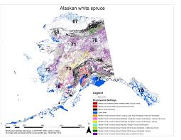 Tanana Alaska Map by Mapb Jpg