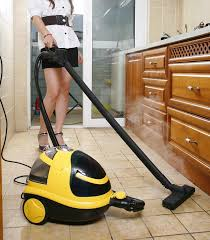 3150w vacuum steam cleaner svc 003