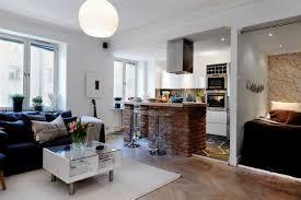 surprising kitchen living room design ideas living room druker us