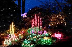 Bellevue Botanical Garden Lights Garden D U0027lights Georgianna Lane