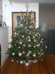 christmas trees plants 4 business ipf omnipex