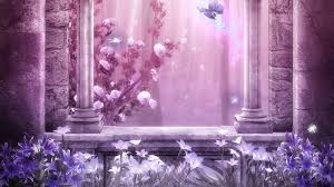 flower lavender flowers pink light window butterfly roses curtain