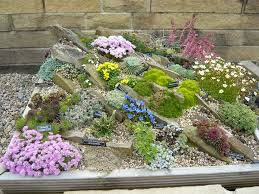 Alpine Rock Garden by Rock Box Rock Box And Blog