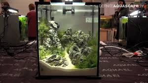 aquascaping layouts with stone and driftwood aquascaping aquarium ideas from petfair 2013 łódź poland pt 2