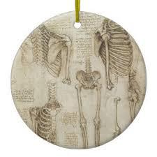 anatomy gifts on zazzle