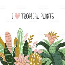 Tropical Home Decor Hand Drawn Tropical House Plants Scandinavian Style Illustration