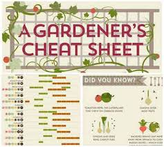 The Summer And Winter Garden - 51 best small space garden ideas images on pinterest small space
