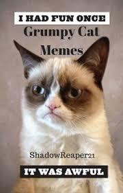 Grumpy Cat Meme I Had Fun Once - grumpy cat memes shadowreaper21 wattpad