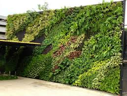 creative of hanging garden wall 26 creative ways to plant a