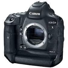 Canon Rugged Camera Best Slr Cameras For Underwater Photography Backscatter