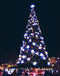 christmas lights u0026 disney by night disneyland paris travels