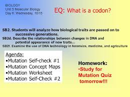 eq what are the 3 steps of dna replication homework read 12 3