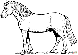 horse coloring picture coloring free coloring pages