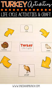 thanksgiving vocabulary words turkey life cycle activities one sharp bunch