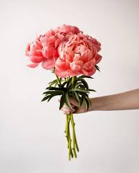 Spring Flower Bouquets - 131 best flowers images on pinterest flowers flower and plants