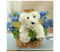 go flowers dogable collection delivery bradenton fl ms s flowers