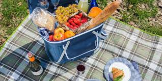 best picnic basket the best picnic basket wirecutter reviews a new york times company