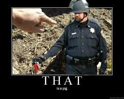 Pepper Spray Cop Meme - image 207844 casually pepper spray everything cop know your meme