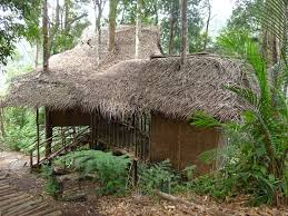 the best nature stay in terra s tree house mothering with