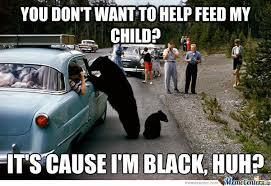 Funny Bear Memes - funny black bear memes go gallery