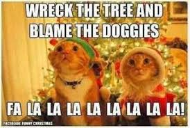 30 funny animal christmas quotes 15 funny quotes funny animals 1