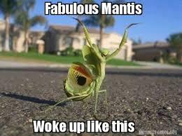 Mantis Meme - meme creator fabulous mantis woke up like this randommm
