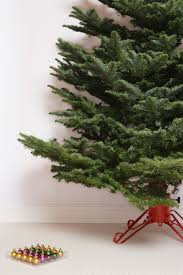 how to care for your christmas tree montana news
