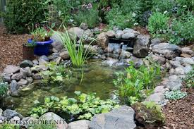 fish pond backyard outdoor goods