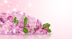 spring floral background gallery yopriceville high quality