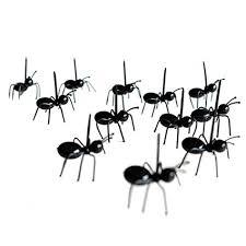 de fourmis dans la cuisine bobury 12pcs set mini fourchette de fourmis fourchette de cuisine en