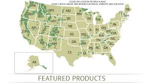 national map national forest map store national forest maps forestry maps