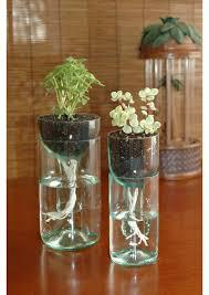 Wine Bottle Planters by Diy Indoor Wine Bottle Gardens Home U0026 Garden Design Ideas Articles