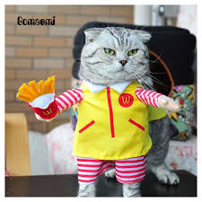 online get cheap cat halloween costumes for cats aliexpress com