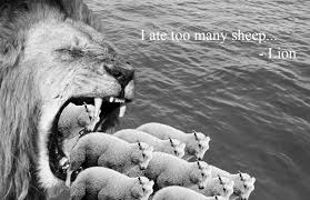 lion sheep the best lion in 2017